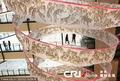 高清:上海200米长卷绘2010只老虎 献礼世博