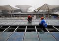 组图:世博园区有国内最大太阳能电池示范区