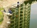 组图:上海企业联合馆公布1月最佳征集照片
