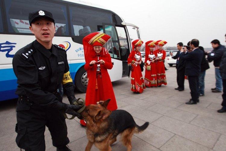 外执勤民警携警犬对广场车辆进行安检,吸引了会议礼仪小姐的目光。摄影:崔萌/CFP 版权图片,请勿转载