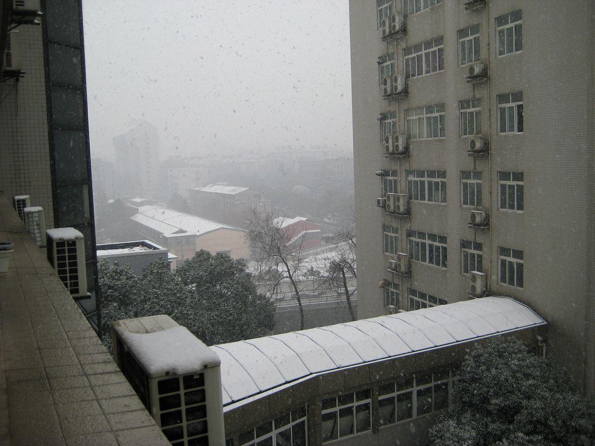 实拍武汉理工大学雪景 图片来源:大楚网友 广广