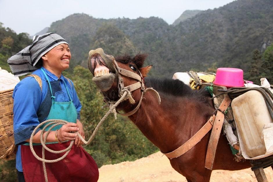 4月1日,这匹马经长途徒步抬起头来,问主人讨水喝。