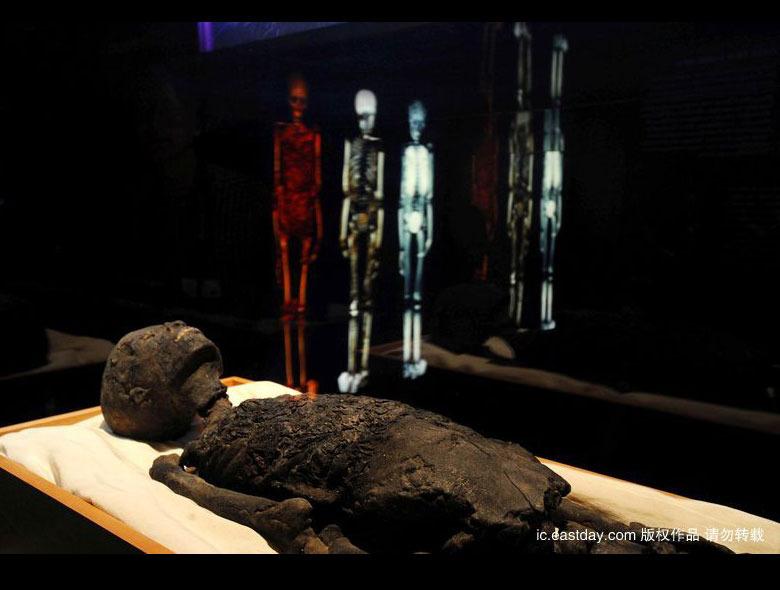 0件物品再现了古埃及18王朝的皇室葬礼习俗.1976年至1979年在美国图片
