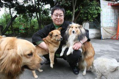 """张越用行动呼吁人们""""关爱流浪动物""""_腾讯公益_腾讯网"""