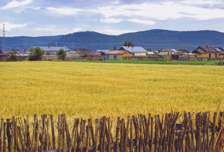 《田园》 摄影:王文凯
