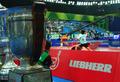 组图:考比伦杯静待主人 中国女队力冲9连冠