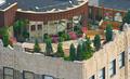 组图:纽约楼顶上的别样风景 随处的隐密花园