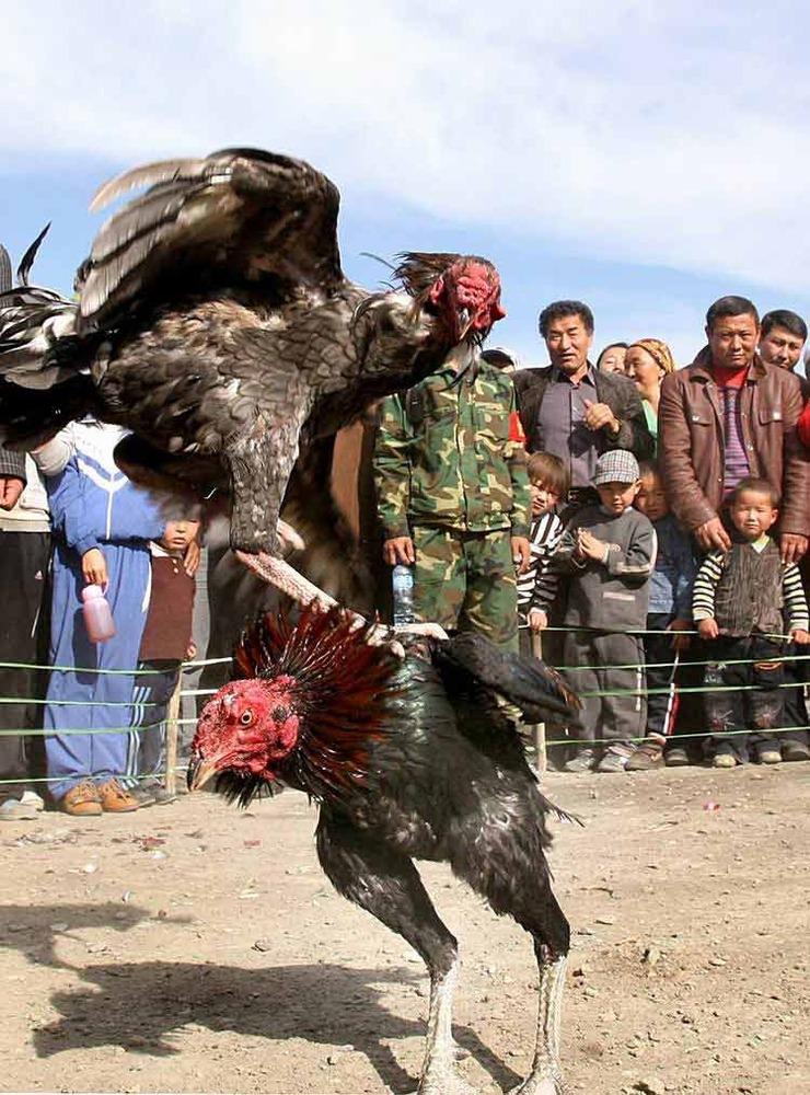 亚心网记忆影像新疆2009年图片年度:10月过年为什么要跳舞龙舞狮图片