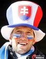 图文:洪都拉斯0-1智利 双方热情球迷(9)