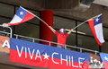 图文:洪都拉斯0-1智利 双方热情球迷(17)