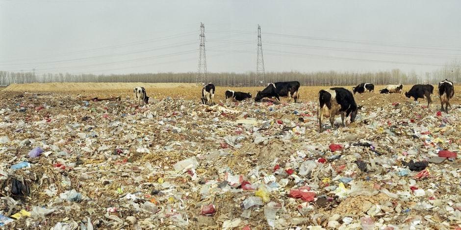 北京市昌平区小汤山镇官牛坊村(图片摄于2009年3月,北纬40°09′06″ 东经116°22′14″)
