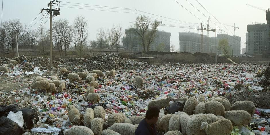 北京市通州区梨园镇土桥(图片摄于2010年4月,北纬39°51′52″ 东经116°41′07″)