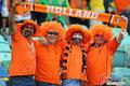 图文:荷兰VS日本 球迷助威比赛(8)