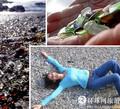 组图:美国垃圾场变身最美玻璃海滩