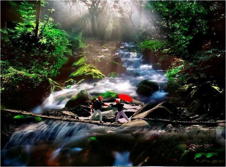 中国天气网2010春季摄影大赛获奖作品_湛江二中吧_贴吧 - 不老松 - nihao1234123 的博客
