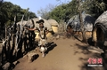 高清:南非约翰内斯堡的土著部落风情