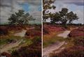 高清:英国老太利用缝纫机制出逼真风景挂毯
