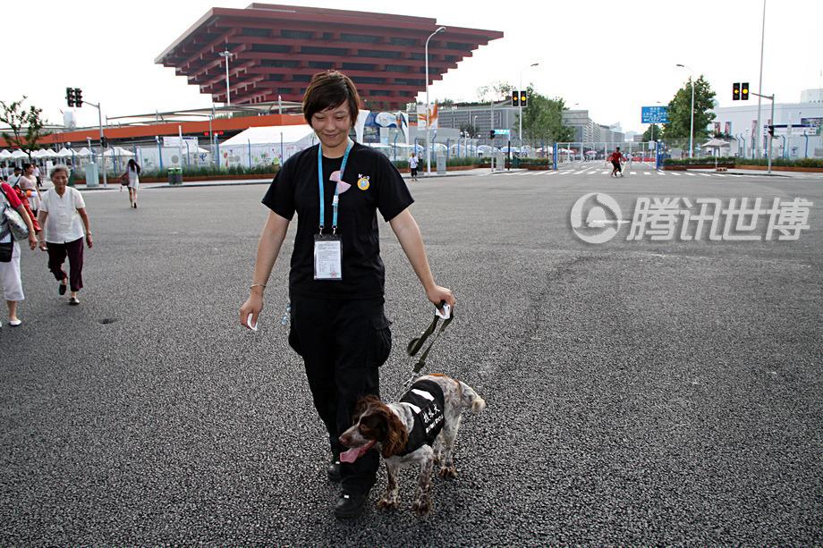 """6月30日""""牙牙""""到浦东靠近中国馆的5号门来执勤了"""