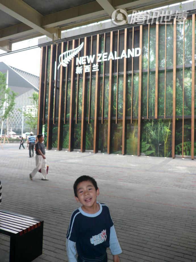 新西兰:绿色丛林。