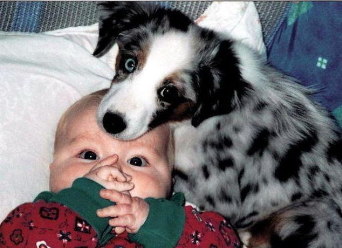 高清:孩子与小动物在一起的温馨感人瞬间