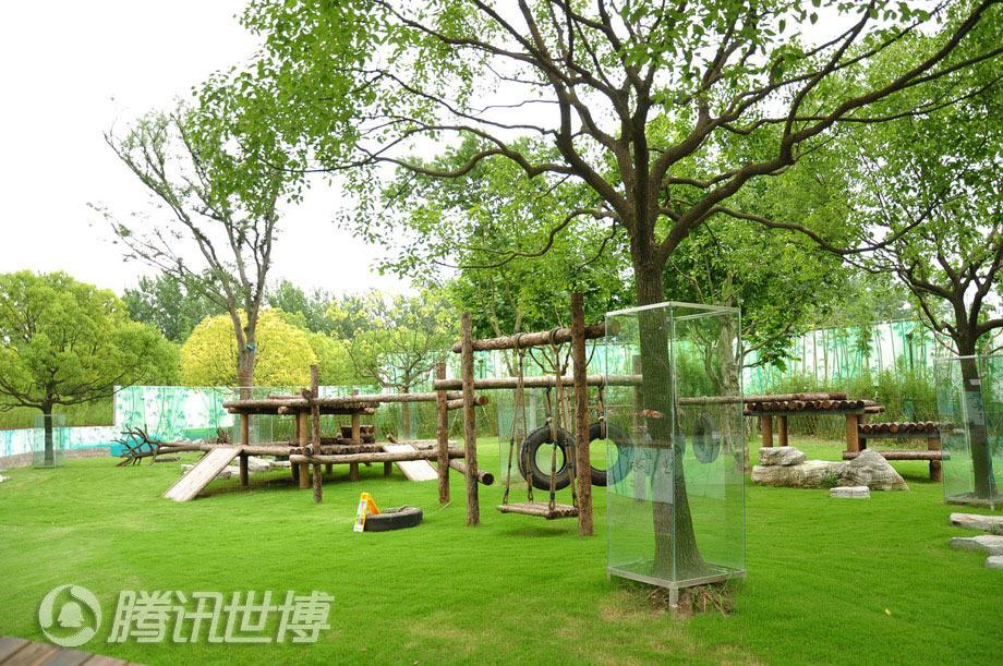 大熊猫野外活动场所