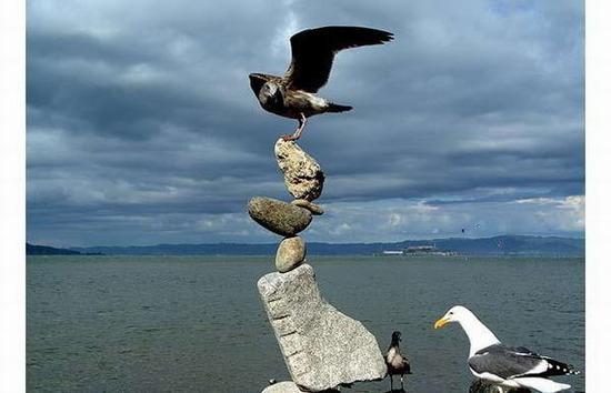 """组图:""""平衡大师""""不可思议的石冢雕塑_世博_腾讯网 - 成真吾 - 成真吾"""
