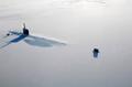 高清:图说北极冰雪王国 白色世界中隐藏奥秘