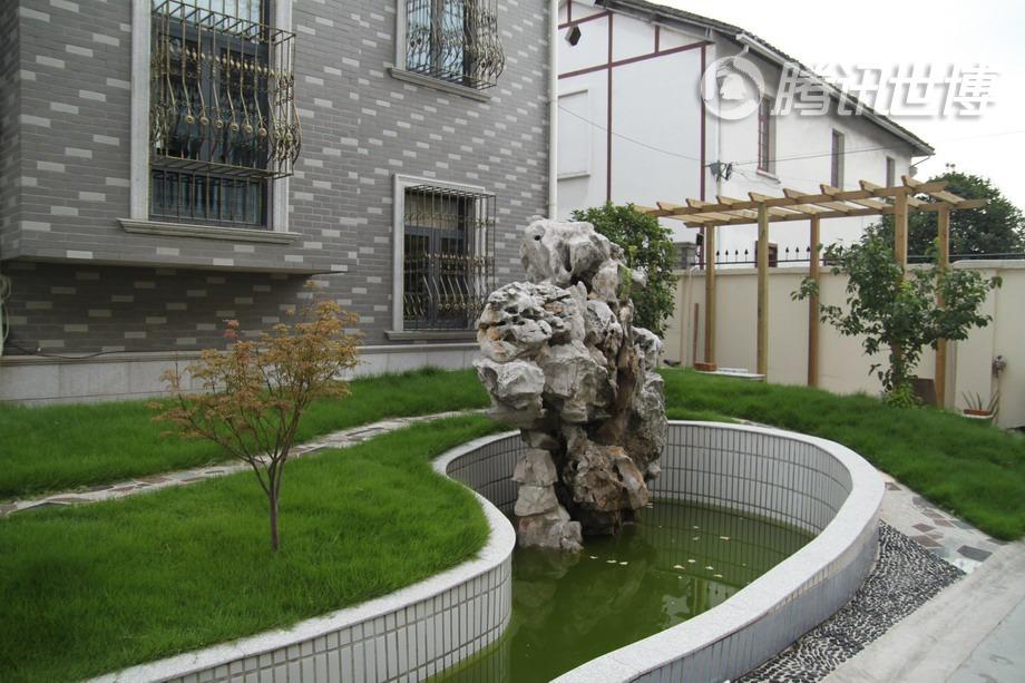 毛老师家的院子,有江南园林代表性的元素:假山、鱼塘和藤架