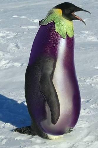 """令人叫绝的蔬菜水果""""魔术大变身"""" - 敏儿 - 敏儿"""