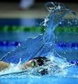 水运会游泳1日赛况