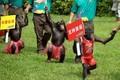 组图:动物运动会开锣迎亚运 黑猩猩点燃圣火