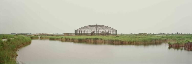 艺术类+艺术探索典藏作品+湿地(组1)+李林