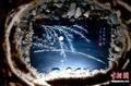 高清:艺术家用鱼骨虾壳打造惊艳画作