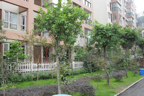 万州金泉 阳光花园 塑造高品质生活小区