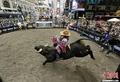 高清:美国纽约时报广场上演骑牛大赛
