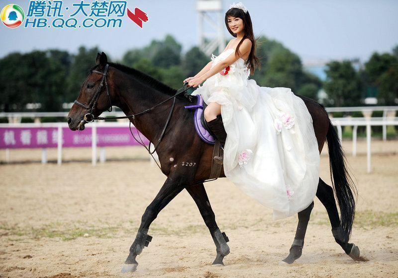 大楚网楚美人美女骑士惊艳武汉东方马场高清