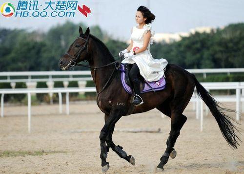 美女骑马; ◆武汉:马模选秀大赛