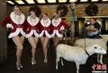 高清:火箭女郎舞蹈团携动物造势圣诞大汇演