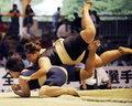 震撼实拍女子相扑运动