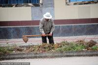 高清:海南市民在绿化带种菜应对高菜价