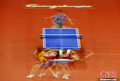 """赛场""""梦幻""""乒乓球"""