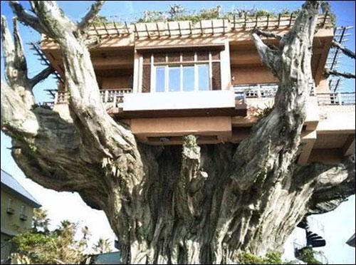 这样的房子你敢住吗--令人叹为观止的房子