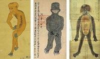 全球20大神秘怪兽:黑色猴子VS死亡之虫