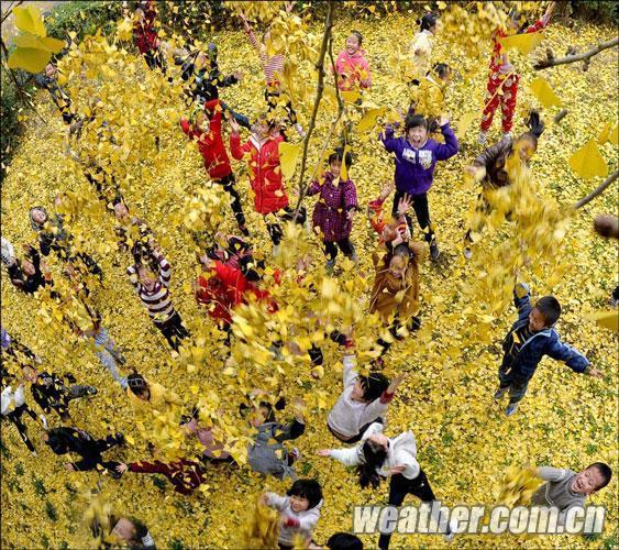 天气网2010秋季摄影大赛一等奖作品《秋爽》作者: 陈洁-中国天气