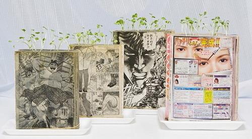 震撼!东京艺术家发明漫画种植术