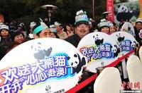 """大熊猫""""开开""""""""心心""""启程赴澳门定居"""