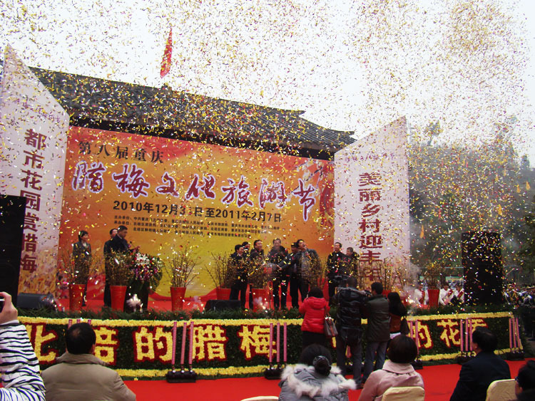 第八届重庆腊梅节开幕