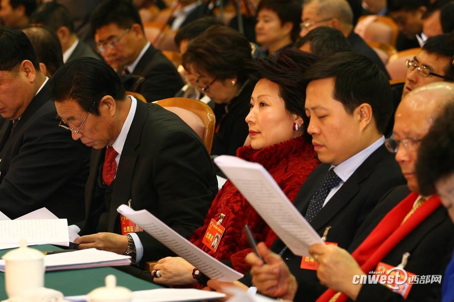 港澳侨委员在大会上听取省政协工作报告