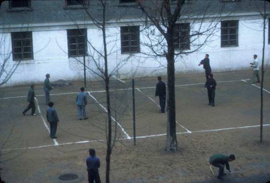 打排球高清图片