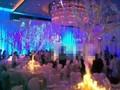 组图:大S婚礼激动落泪 仪式结束宾客享受晚宴